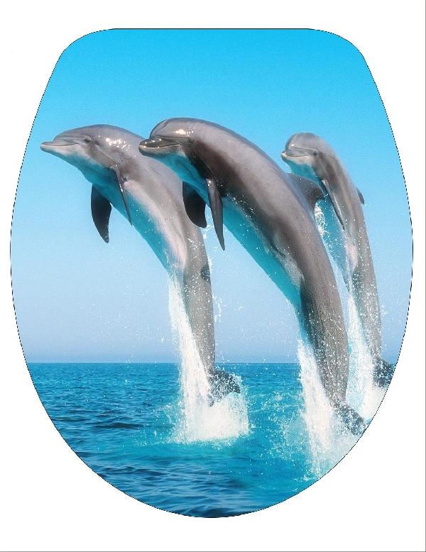 BRH 3 Delfines wc tető